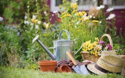 Spring cleaning and your roof